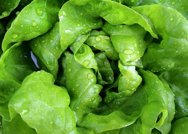 Samo zdrowie! 8 smaków sałat